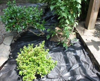 best weed barrierrs and landscaping fabric
