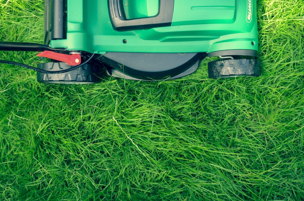 Short Intro Into The Basics of Lawn Care for an Epic Curb Appeal 1
