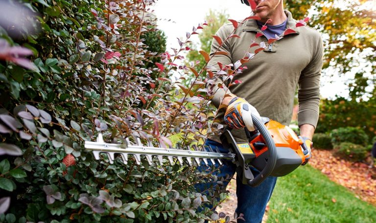 5 Best Gas Hedge Trimmers of 2019 Reviewed