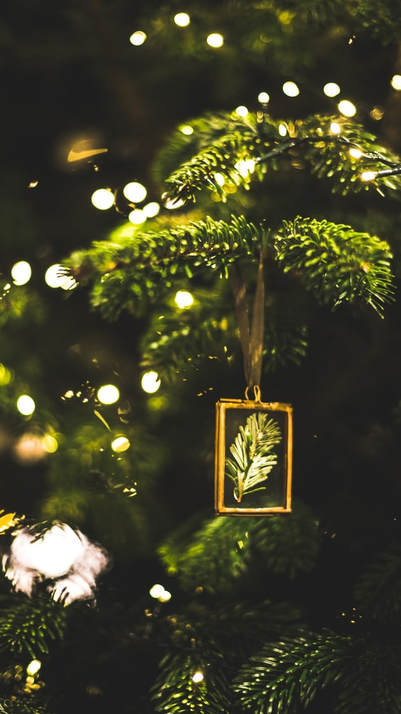 14 Best Christmas Tree Lights To