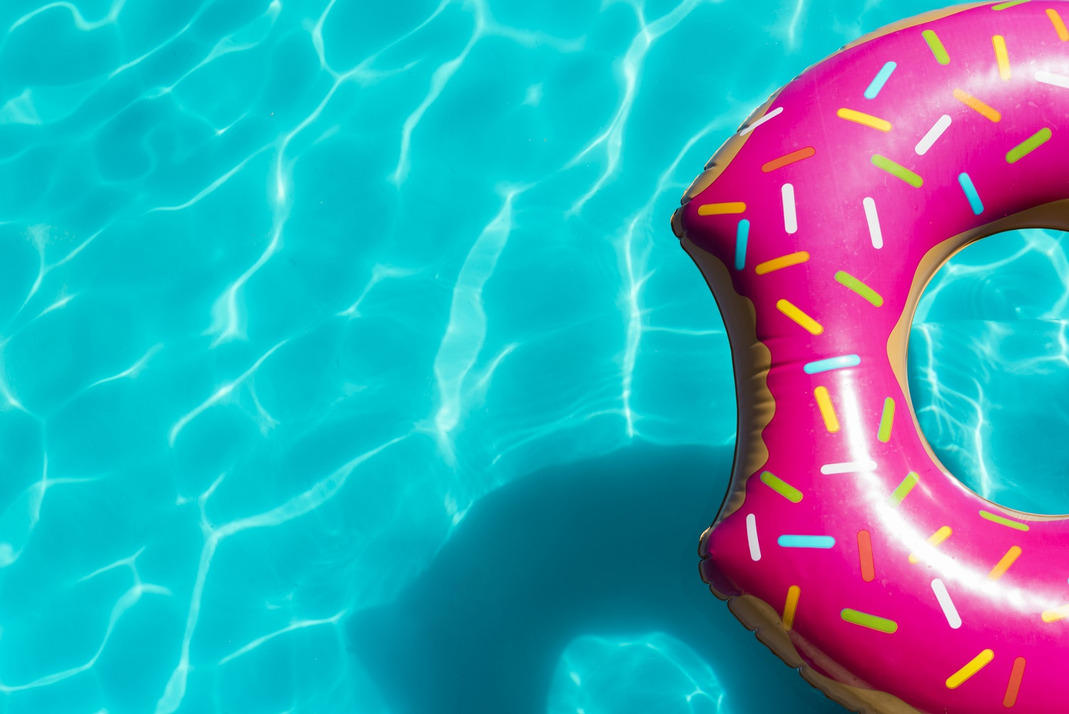 10 Best Pool Cover Pumps of 2019 | Buyer\'s Guide and Reviews ...