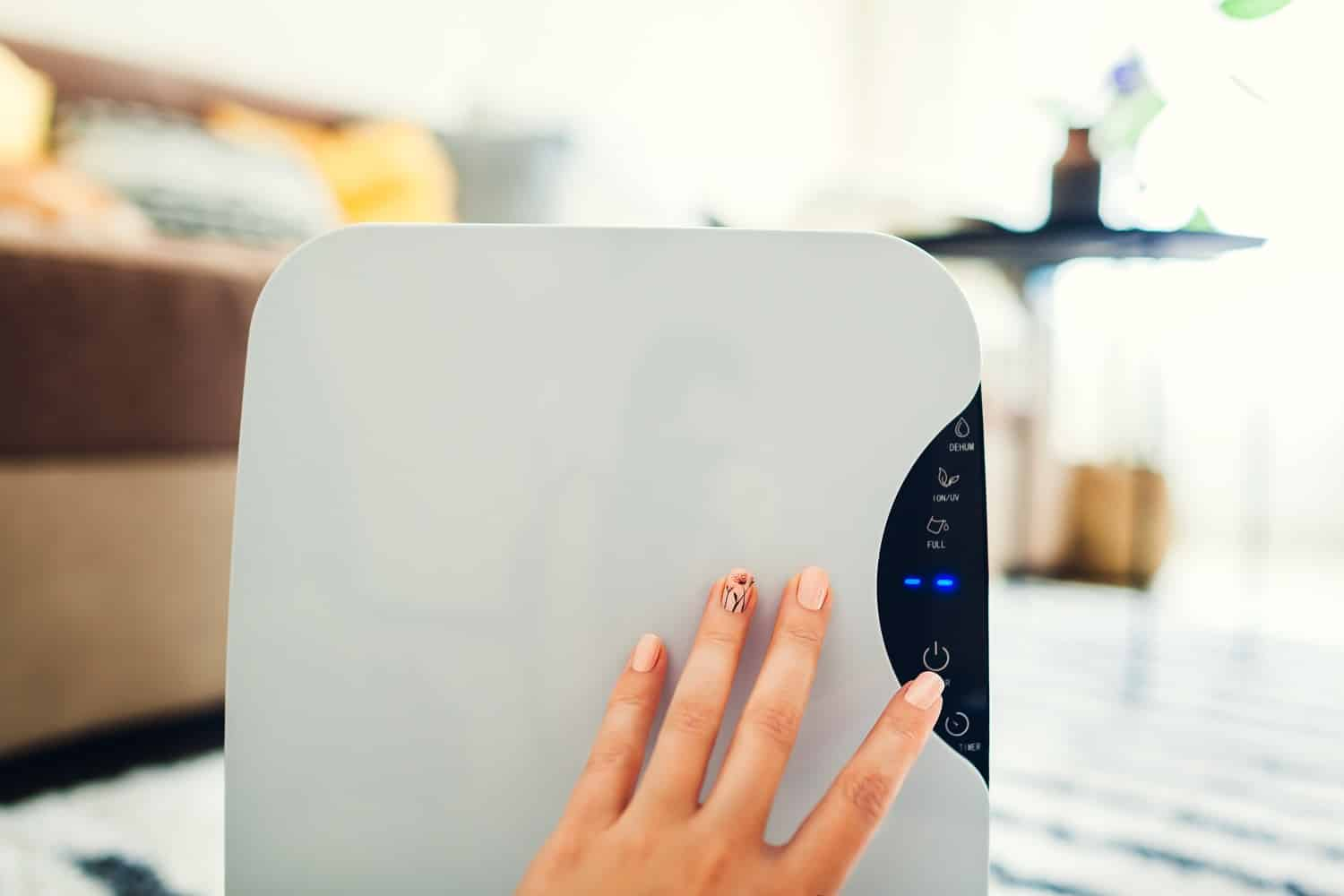 Best Humidifier for Eczema