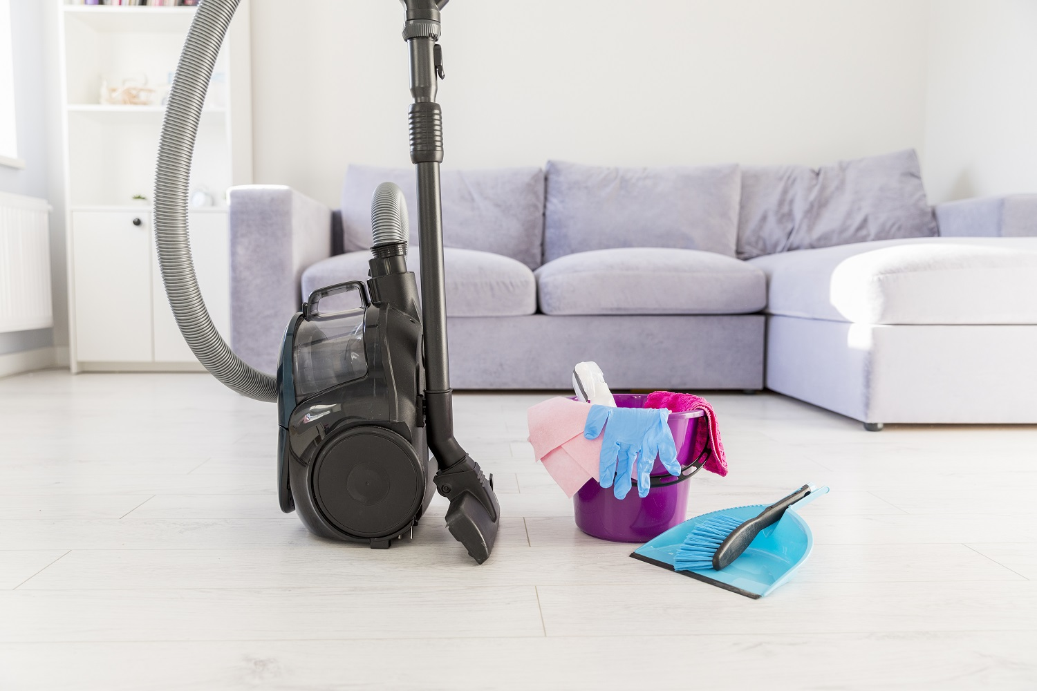 Best Canister Vacuums 1