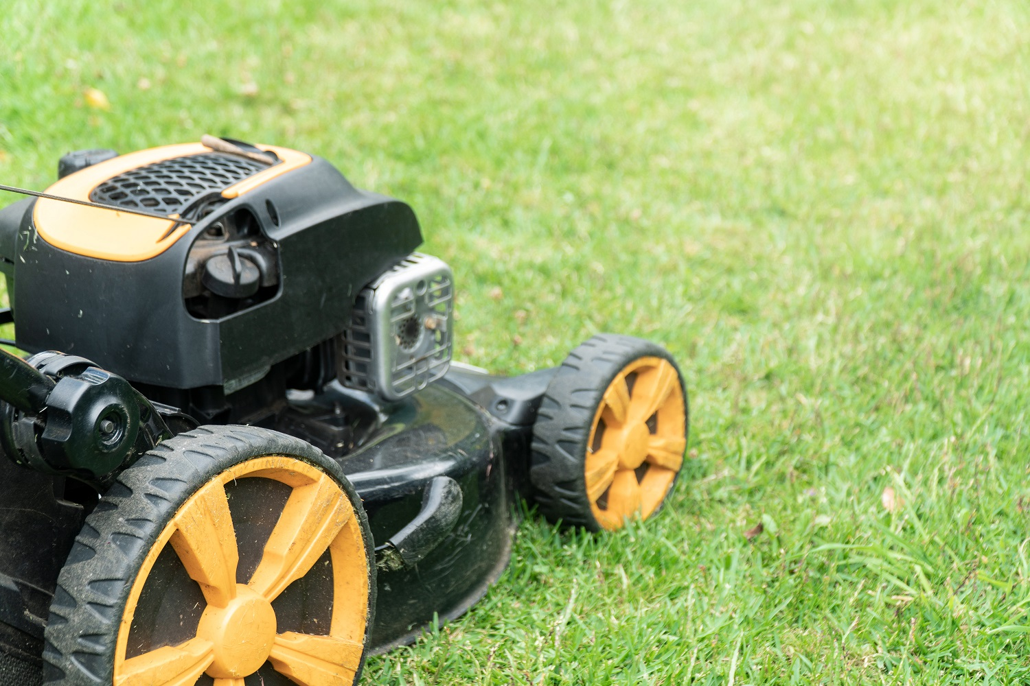 Lawn mower on green grass with copy space for text. Garden work concept background