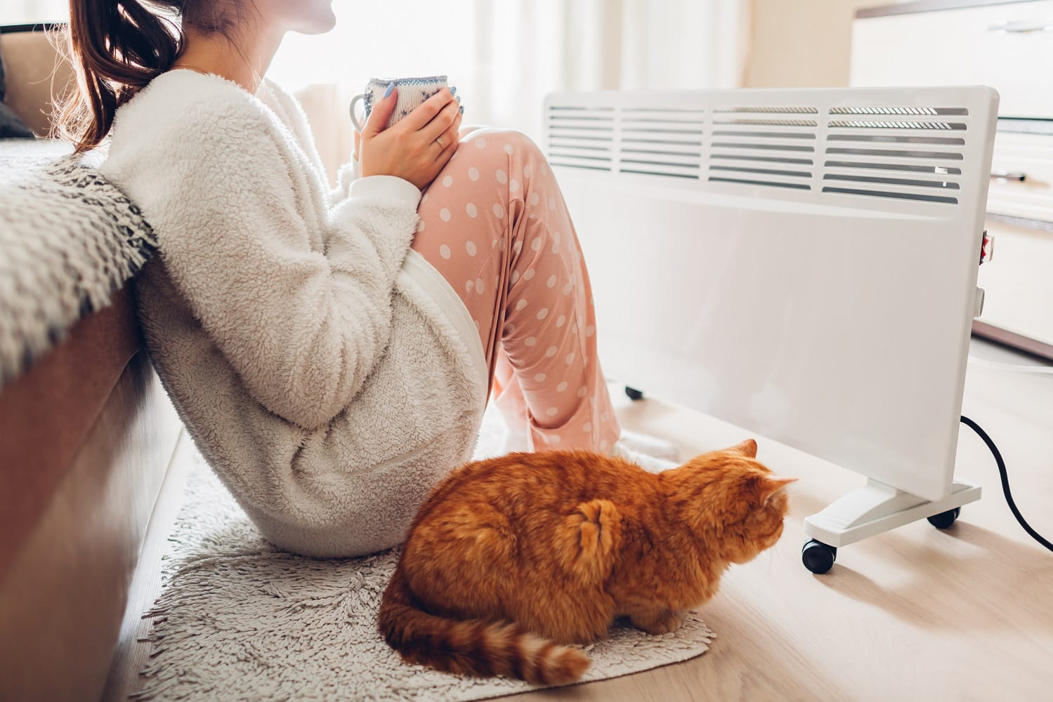 Using heater at home in winter. Woman warming and drinking tea with cat sitting by device and wearing warm clothes. Heating season.
