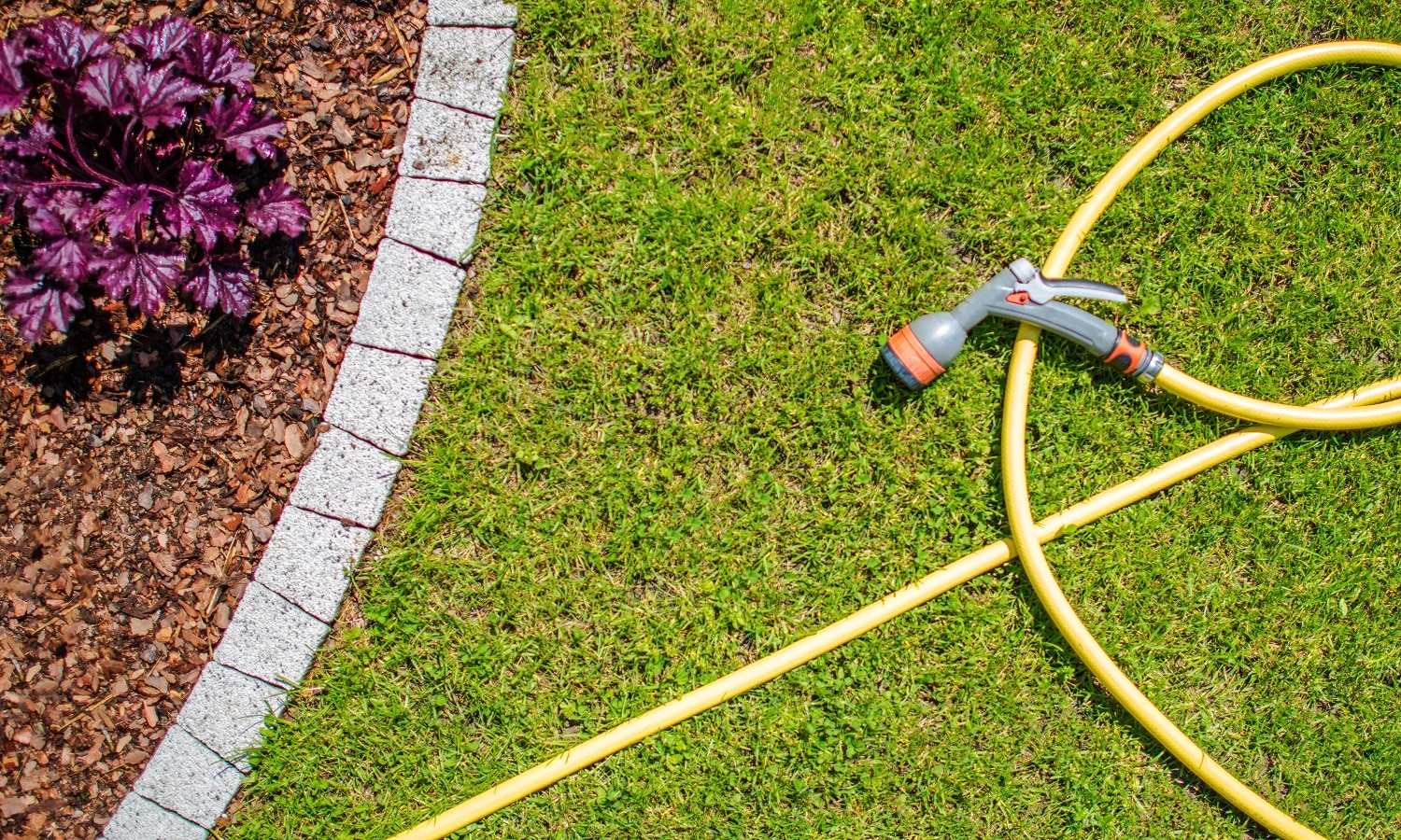 Garden Water Hose with Watering Head. Watering Garden Plants Concept Photo.