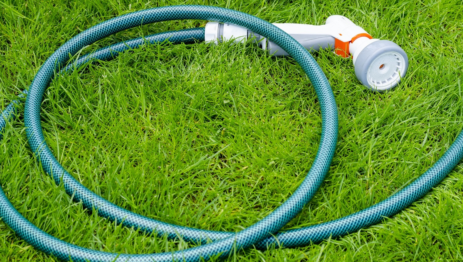 Green hose for watering lies on grass, lawn. Studio Photo