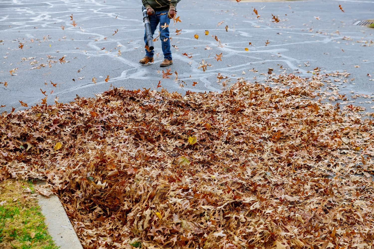 Man working with leaf blower: the leaves are up and down on a sunny day