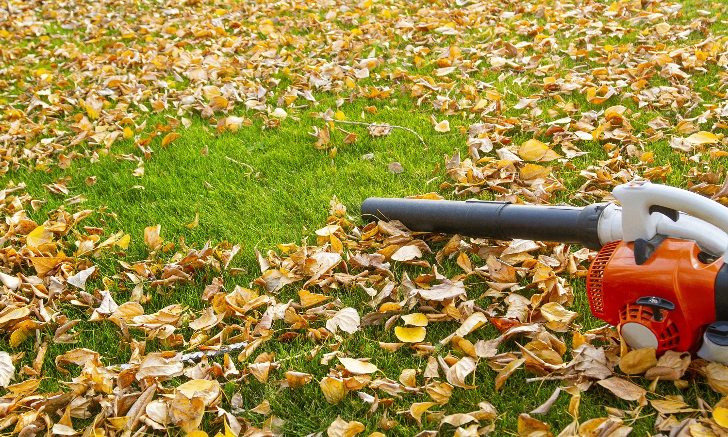 13 Lightest Weight Leaf Blowers For Home Use 04