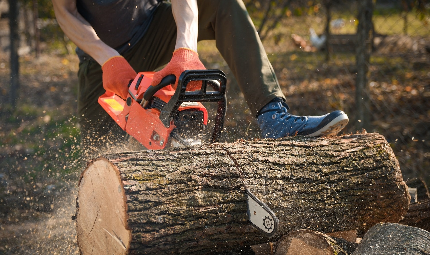 Different Types of Saws How to Use Them 2