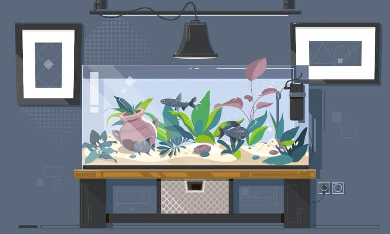 Cartoon freshwater fishes in tank aquarium vector illustration.