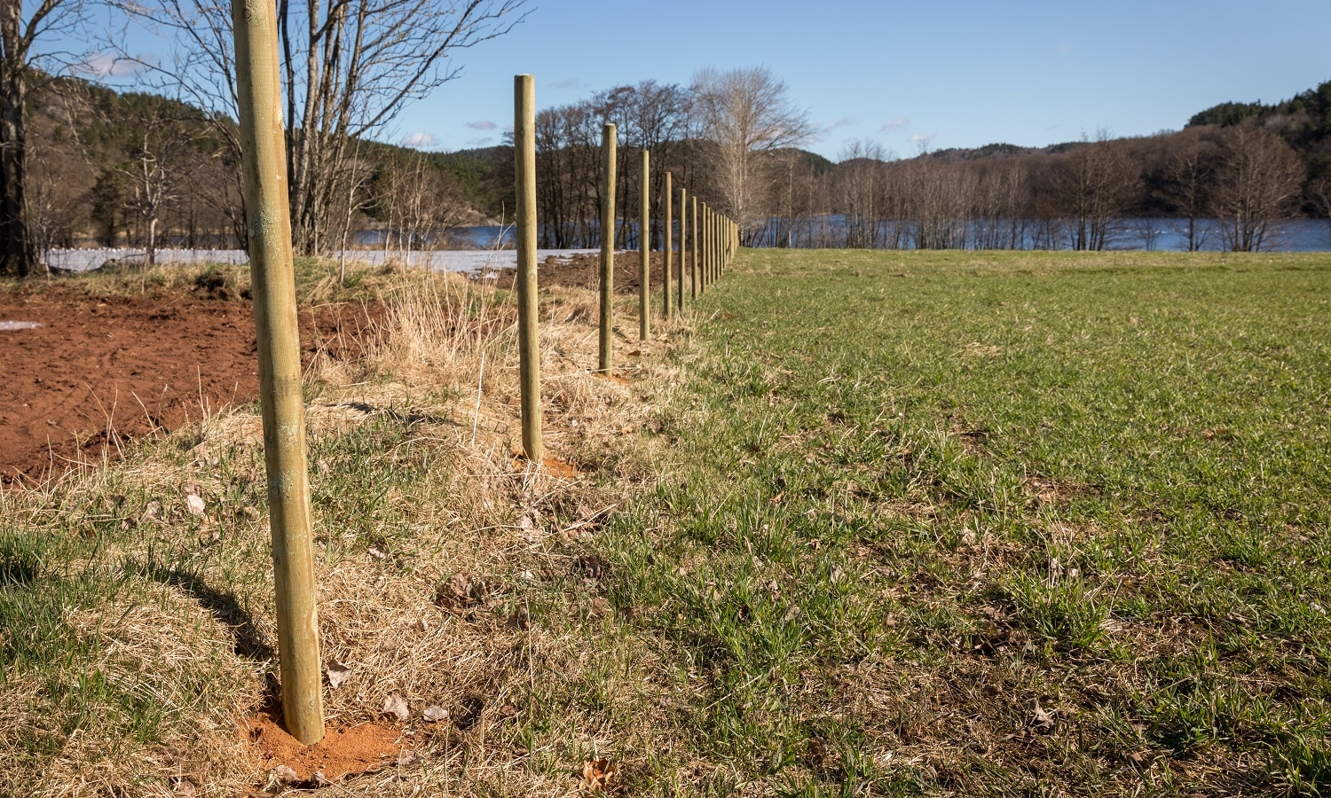 New fence in the making. Wooden fence posts placed on a straight line on a field. Sunny day in spring.