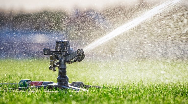 Automatic sprinkler system watering the lawn. close-up. Green grass background.