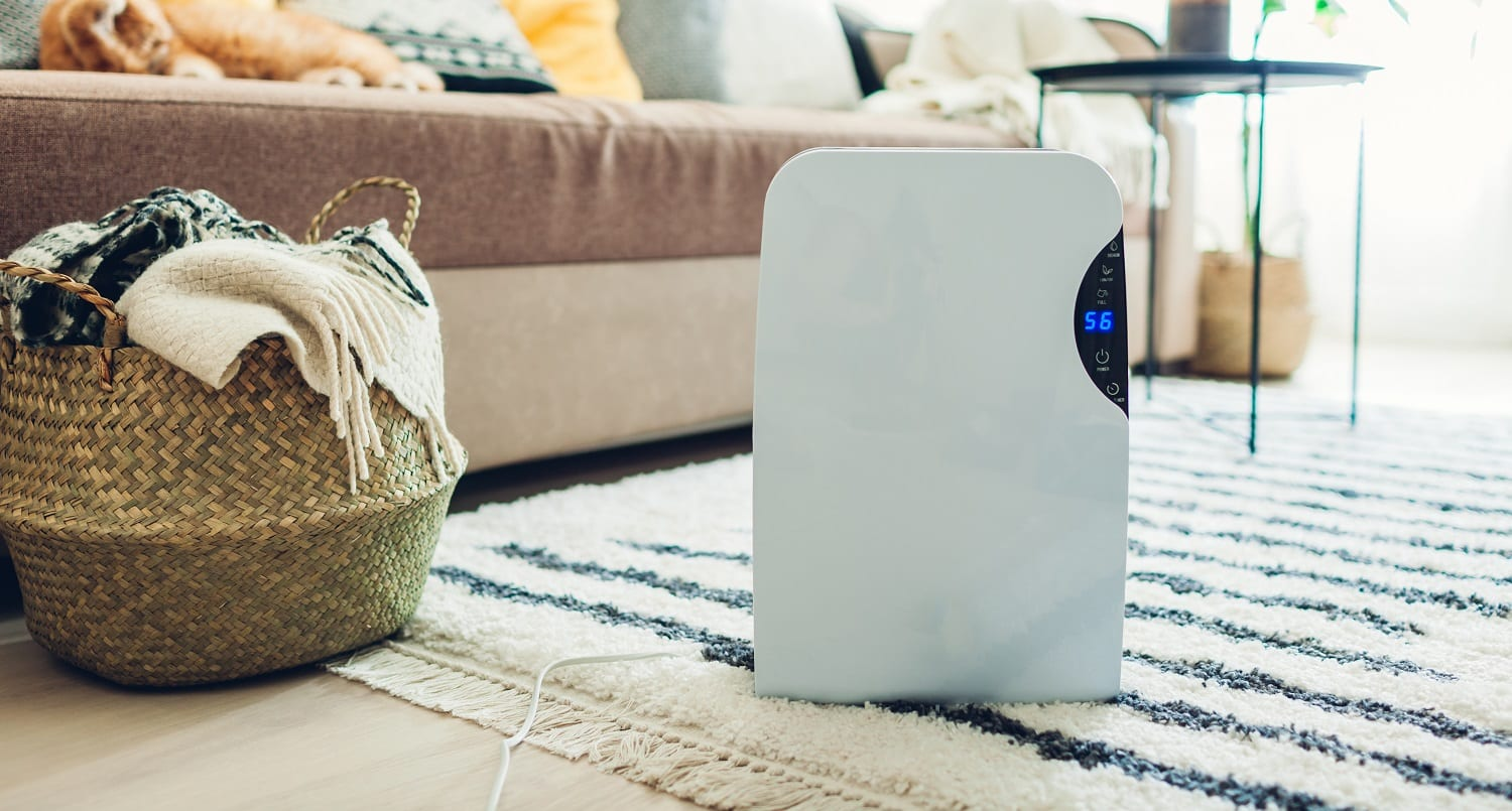 Dehumidifier with touch panel, humidity indicator, uv lamp, air ionizer, water container works at home. Modern design feets interior. Air dryer