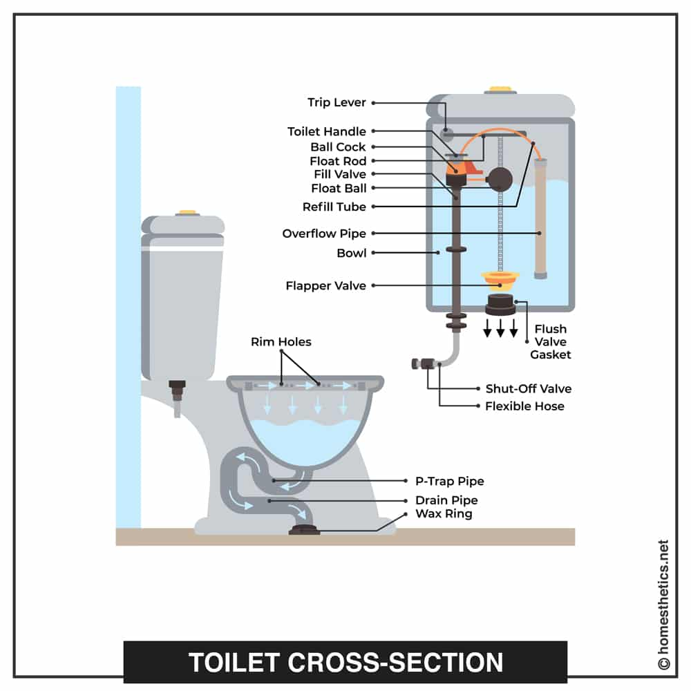 All The Parts of a Toilet Explained cross section copy