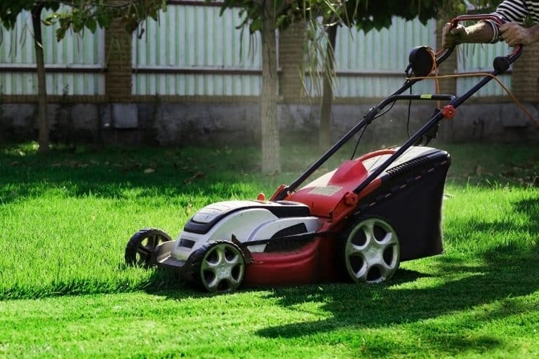 Gardener by electric lawn mower cutting green grass in the garden. Garden meadow lawn cutting. Worker guy trimmed grass field. Backyard care concept