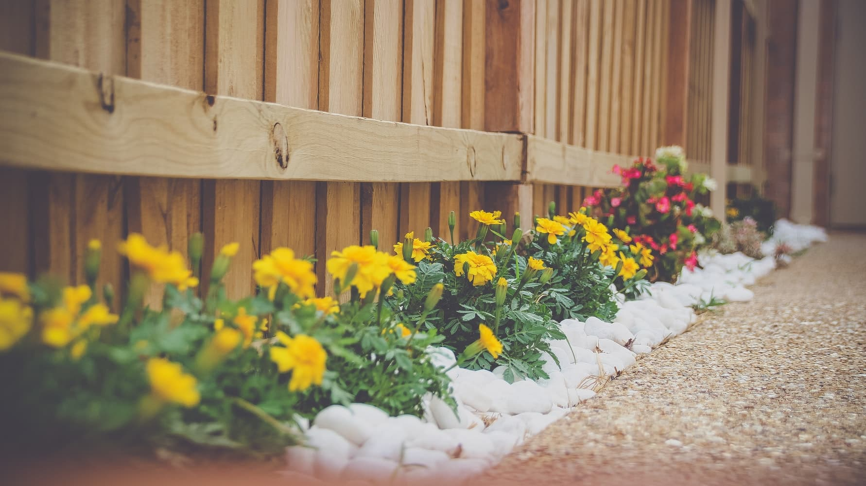Does Landscaping Increase Property Value 1