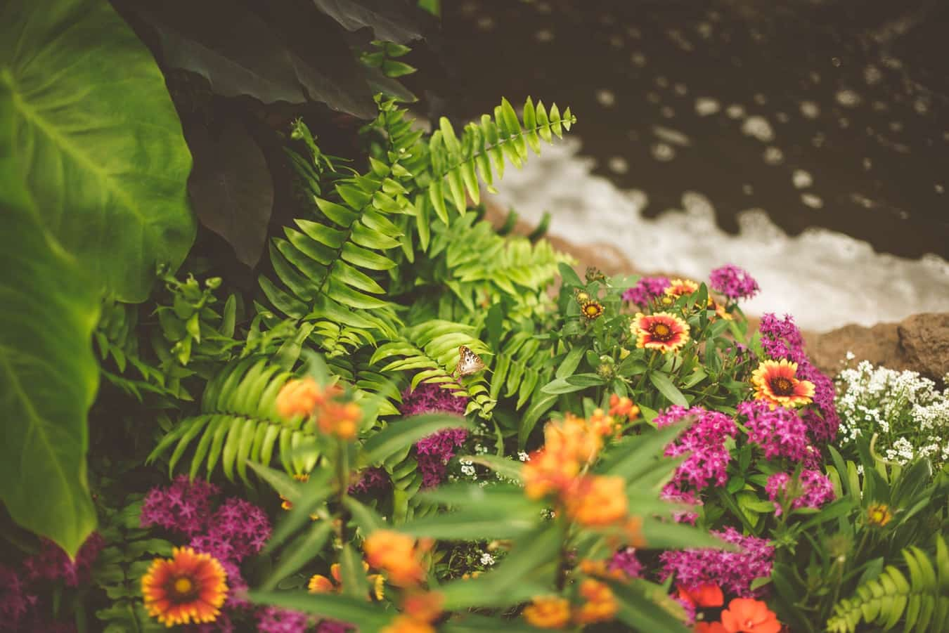 Does Landscaping Increase Property Value 3