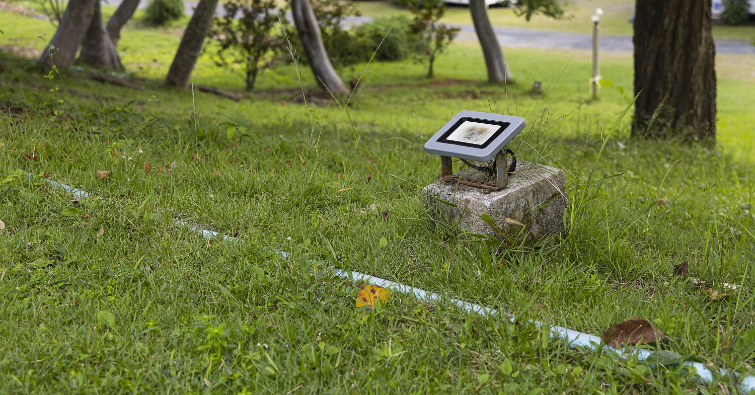 LED landscape lighting on the grass in the garden.