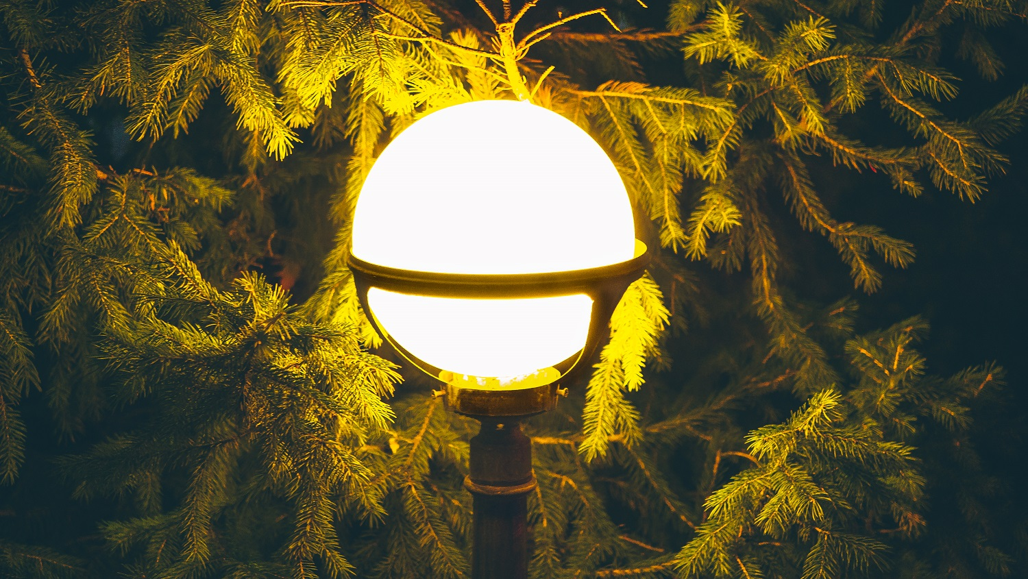 Street vintage lamp with christmas tree in the evening outside