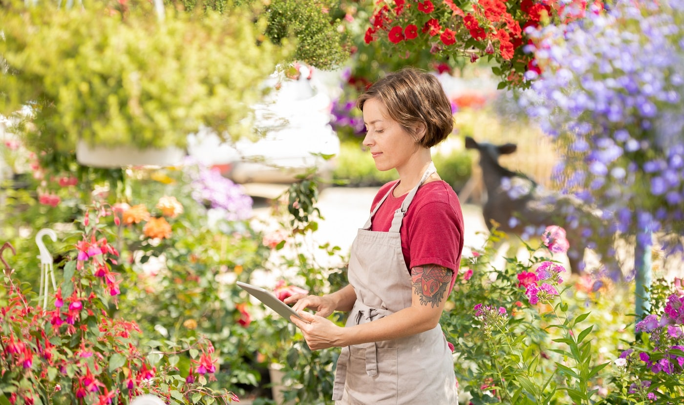 Young female entrepreneur in apron looking at tablet display while reading online data about plants