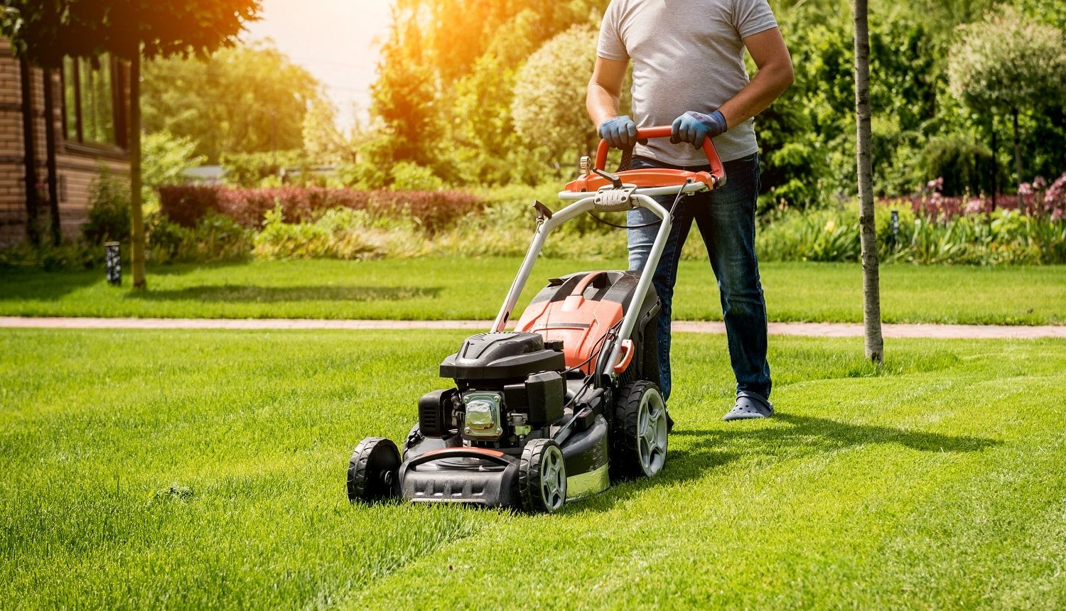 Gardener mowing the lawn. Landscape design. Gardening