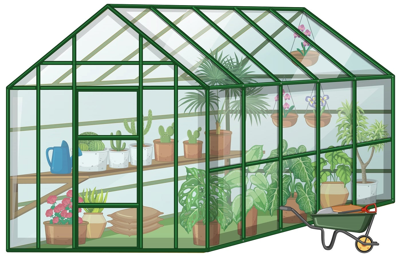 Many Plants in Greenhouse with glass wall and wheelbarrow on white background illustration
