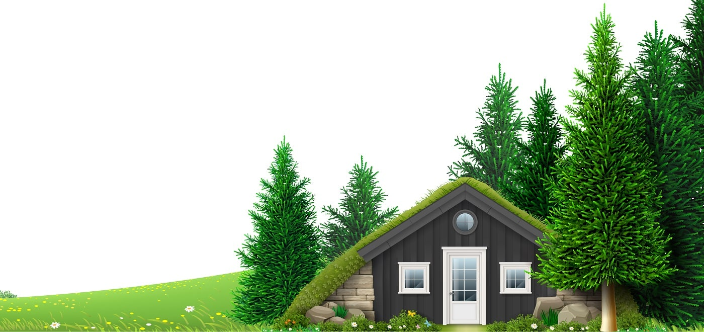 A hut on the edge of the forest. Background banner. Pine forest.
