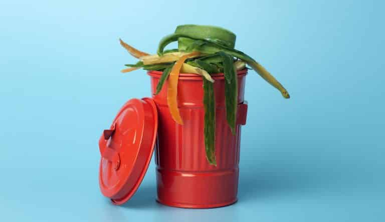 Organic waste in a red trash can. Recycling and sorting of garbage, food and organic waste.