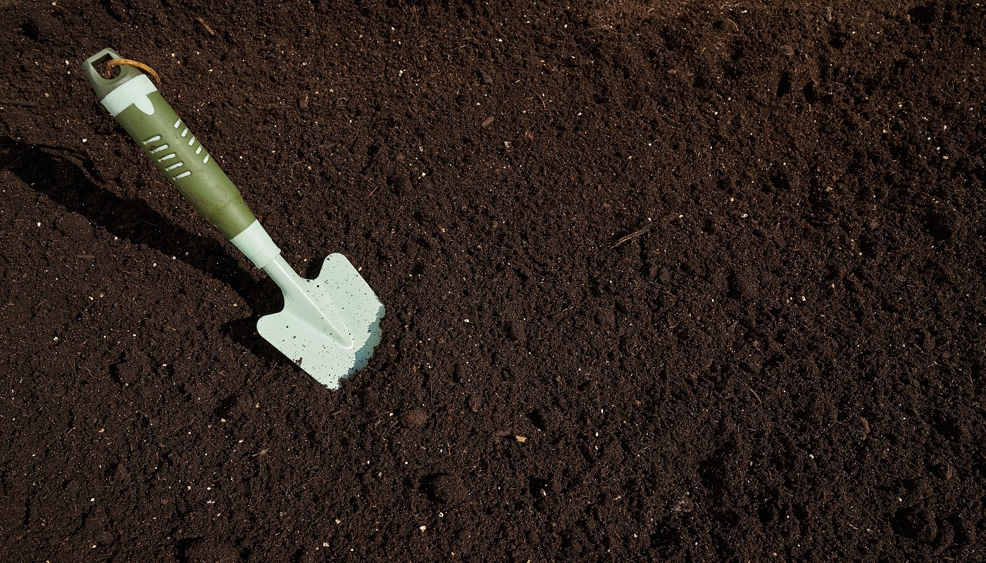 Garden trowel in substratum for orchard background