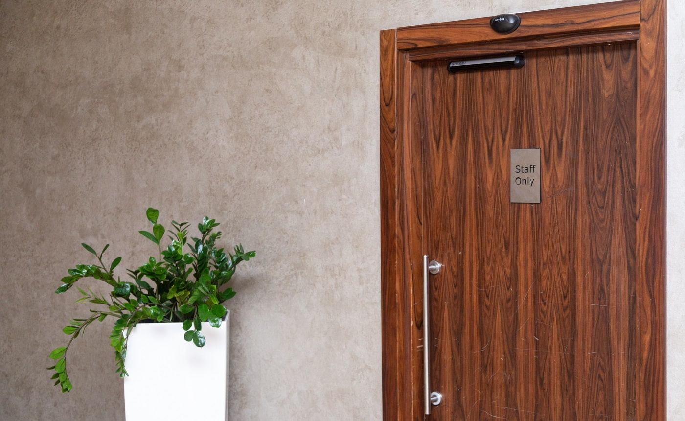 horizontal monitor with a color image weighs next to a wooden door and two flowerpots with artificial leaves next