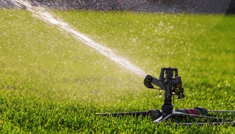 Automatic lawn sprinkler watering green grass on a stadium. Irrigation system.