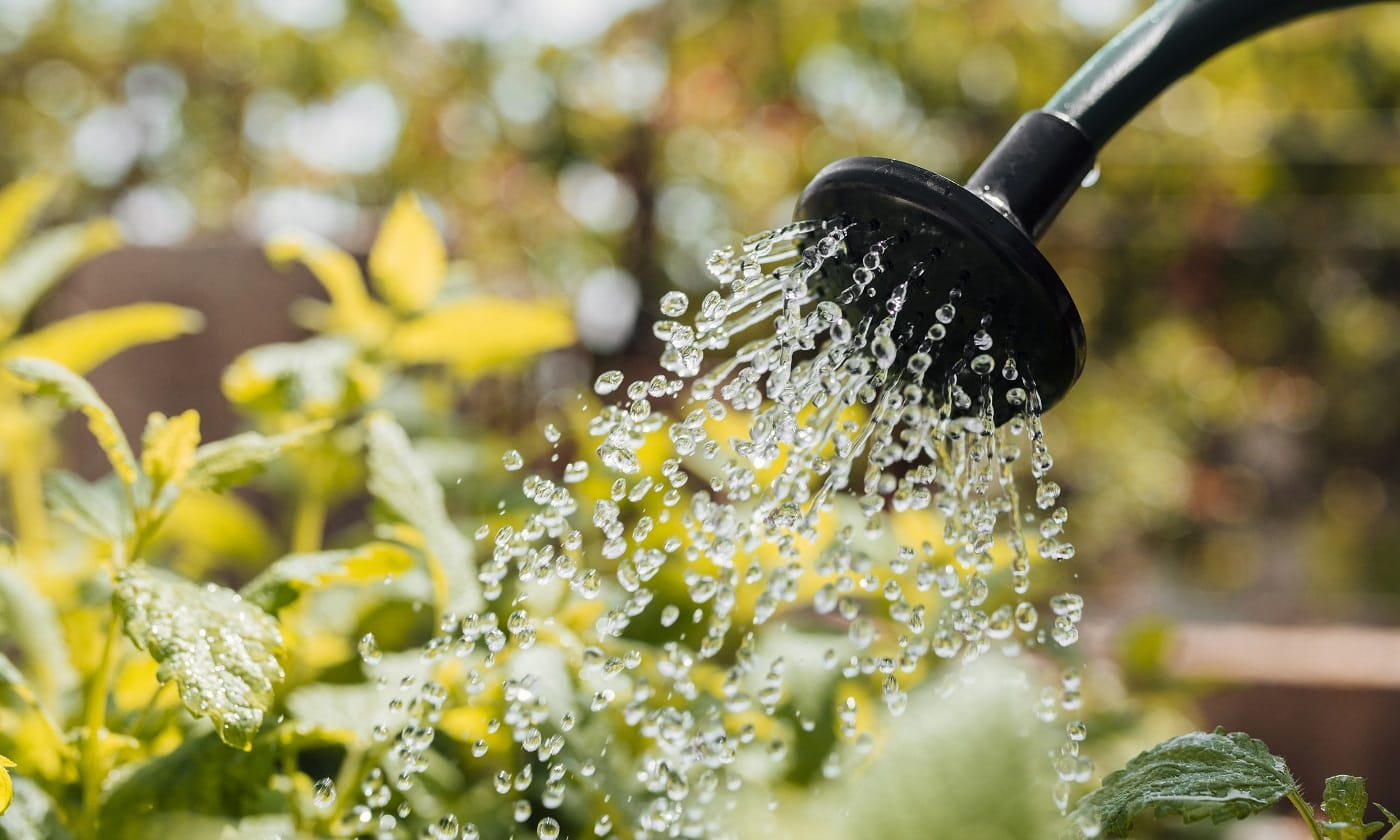 Best Watering Timers for Garden Lawn 03
