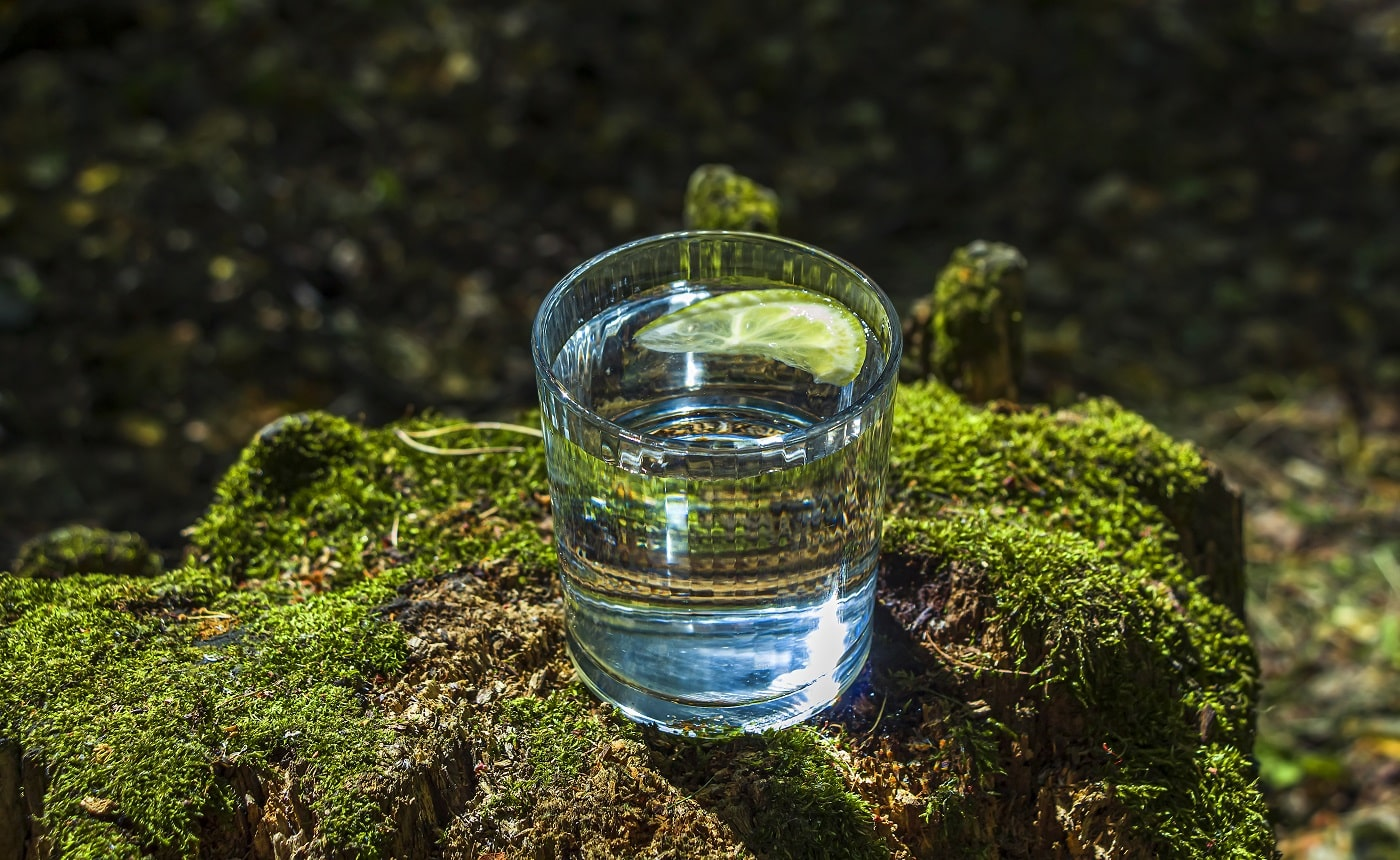 Glass of clean fresh water on tree stump with moss against green natural background. Spring ecologically pure water. World Water Day
