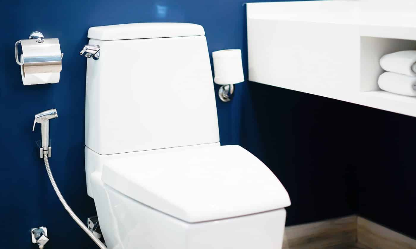 Modern bathrooms with flushing and decorating ideas