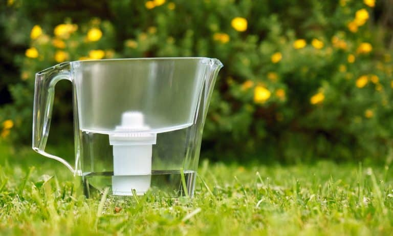 Water filter standing on the green grass in summer garden with beautiful flowers growing on the bush on the background