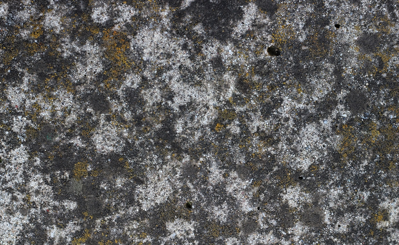 Grunge wall texture background. Paint cracking off dark wall with rust and moss underneath.