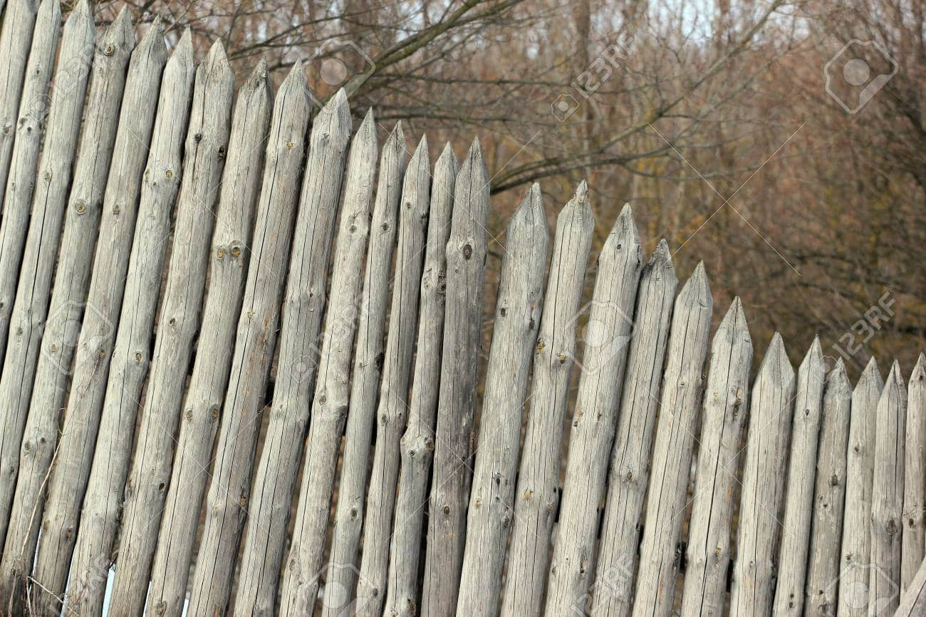Old wooden stockade fence